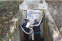 How Tamil Nadu's snake trackers are saving Florida's wildlife from pythons
