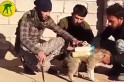 Iraq: Is ISIS using puppies as suicide bombers in the Battle for Mosul? [VIDEO]