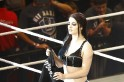 Splitsville for Paige and Alberto del Rio? WWE Diva finally speaks out