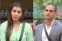 Bigg Boss 11: Shilpa Shinde thinks Priyank Sharma will be EVICTED this week
