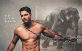"Actor Harshvardhan Rane, who has ventured into Bollywood with ""Sanam Teri Kasam"", is trying to draw people's attention towards the condition of abused elephants, which are used for tourist joyrides. In Harshvardhan's new campaign for animal rights organisation People for the Ethical Treatment of Animals (PETA) India, he stands bare-chested in chains next to the tagline, ""It's Not Just a Ride. It's Their Life. Elephants Used for Rides Are Beaten, Chained, Broken"". ""Elephant rides are not at all joyful for the animals. I don't think it is cool at all to apply force and make someone do something which they are not willing to,"" Harshvardhan, who has also starred in Telugu films, said in a statement. A PETA-commissioned investigation of elephant training in Nepal and of elephants used for rides in Jaipur revealed that the tuskers are physically and emotionally abused at every juncture."