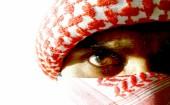 Anees Ansari terror attack American school