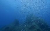 underwater glue