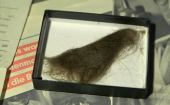 Lock of John Lennons hair set for auction