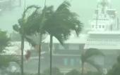 Cyclone Debbie batters coastal areas in Australia
