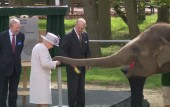 Queen goes bananas with elephants at Whipsnade Zoo