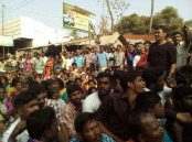 Hundreds of people in Tamil Nadu took to the streets on Tuesday against the arrest of those who protested in favour of Jallikattu. On Monday, thousands of youths who started their protest in Alanganallur in Madurai district against a Supreme court ban on the bull-taming sport, were taken into custody by the police on Tuesday as the protest extended overnight.