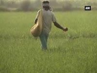 Poor monsoon adversely hits farmers