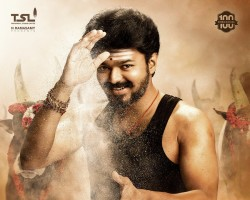 "The makers of actor Vijay's next Tamil outing on Wednesday unveiled the film's title and first look on the eve of the actor's birthday. Directed by Atlee, the film has been titled ""Mersal"", and it is gearing up for a Diwali release. In a statement, the official title was announced along with the film's first look poster. The film marks Atlee's reunion with Vijay after last year's Tamil blockbuster ""Theri""."
