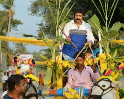 Actor and politician Nandamuri Balakrishna celebrates Sankranthi at Naravaripalli.