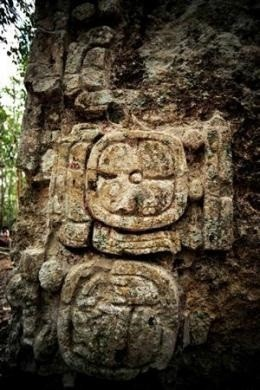 A sculpted stone shaft called stelae is pictured at the newly discovered ancient Maya city