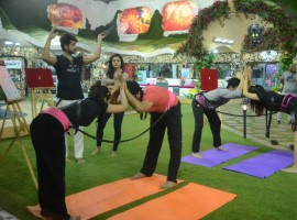 'Bigg Boss 9' pair Rochelle Maria Rao and Prince Narula give their best and over-perform in the luxury budget task on Day 4 of their stay in the house.