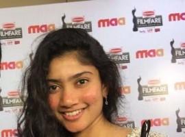 Pranitha Subhash, Akhil Akkineni, Amy Jackson, Sai Pallavi at Filmfare Awards 2016.