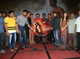 Telugu movie ISM Audio launch event held in Hyderabad. Celebs like Jr NTR, Hari Krishna, Kalyan Ram, Aditi Arya and others graced the event.