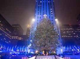 The Christmas tree stands lit after the lighting ceremony for the 84th annual Rockefeller Center Christmas Tree at Rockefeller Center in Manhattan, New York City, U.S., November 30, 2016.
