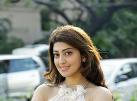 Check out the latest pictures of South Indian Actress Pranitha Subhash.