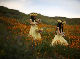 Julia Lu, 5, (L) and Amy Liu, 5, walk through a massive spring wildflower bloom caused by a wet winter in Lake Elsinore, California.