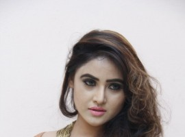 Check out the latest pictures of South Indian actress Sony Charishta.