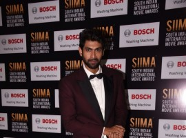 Rana Daggubati spotted at SIIMA Awards 2017.