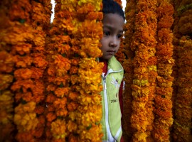 A boy stands in between the garlands kept on sale along the streets of Kathmandu during the Tihar festival, also called Diwali, in Kathmandu, Nepal.