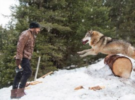 Superstar Salman Khan will be seen battling a pack of wolves in