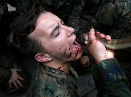 A U.S. Marine drinks the blood of a cobra during a jungle survival exercise as part of the