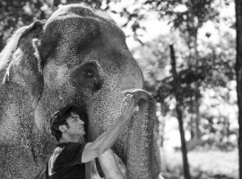 Vidyut Jammwal who is shooting for Junglee Picture's upcoming next Junglee spent most of his time forging a deep bond of trust with the elephants, on the sets of the upcoming family action adventure.
