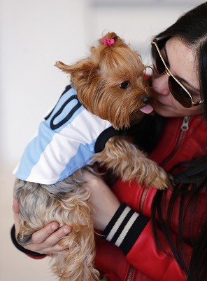 'Love Hormone' Spray make Dogs more Affectionate to Owners; Researchers Find (Reuters)