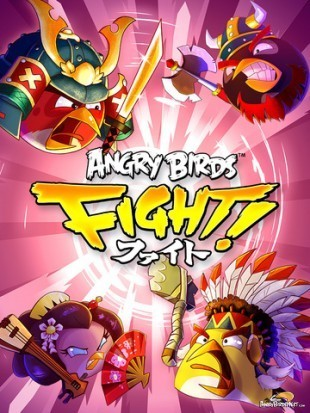 Angry Bird Fights!
