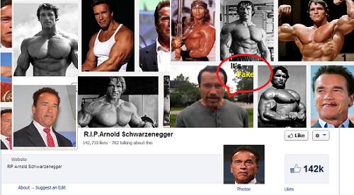 Fake Facebook Page on Arnold Schwarzenegger death/picart-J