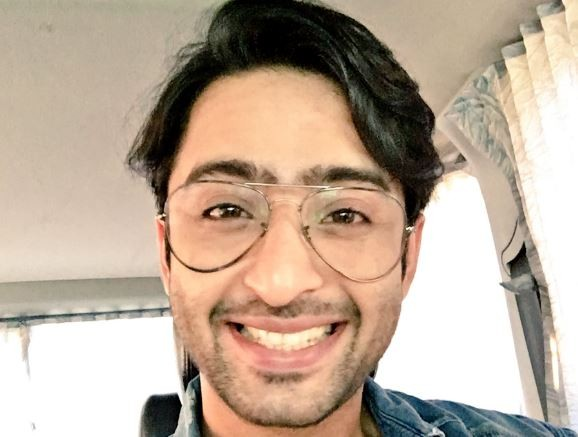 'Kuch Rang Pyar Ke Aise Bhi:' This actress has been bashed by Dev's fans; find out why is Shaheer on cloud nine these days [PHOTO]