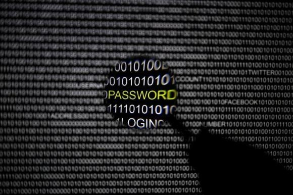 Cyber crime rate to go higher next year