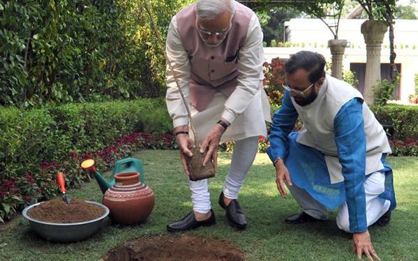 Narendra Modi Planted a Kadam Tree at 7RCR,World Environment Day,Narendra Modi,Modi,Indian Prime minister Narendra Modi