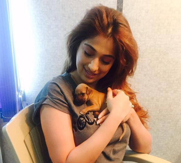 Raai Laxmi,Raai Laxmi new photos,Raai Laxmi hot,Raai Laxmi pics,Raai Laxmi with dog pics,dog lover Raai Laxmi