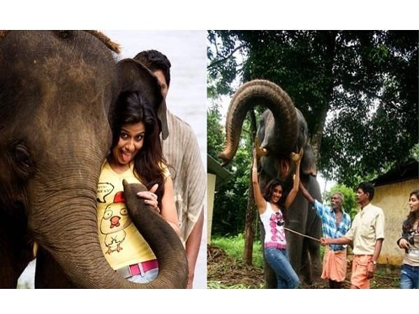 Elephant Ride Lands Nazriya Nazim in Trouble,Nazriya Nazim in Trouble,Nazriya Nazim elephant ride,Nazriya Nazim elephant ride pics,Nazriya Nazim elephant ride images,Nazriya Nazim elephant ride photos,Nazriya Nazim elephant ride pictures