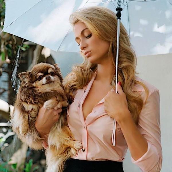 Best girlfriend Paris Hilton is pregnant 05/14/2009