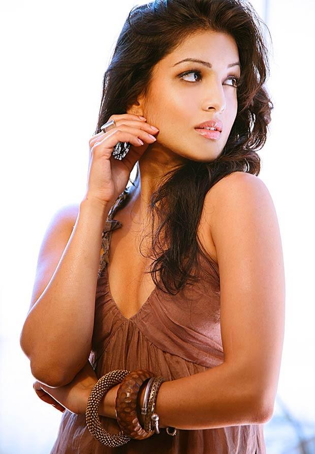Pallavi Sharda,actress Pallavi Sharda,south indian actress Pallavi Sharda,Pallavi Sharda Latest Photos,Pallavi Sharda Latest pics,Pallavi Sharda Latest images,Pallavi Sharda Latest stills,Pallavi Sharda pics,Pallavi Sharda images,Pallavi Sharda photos,Pal