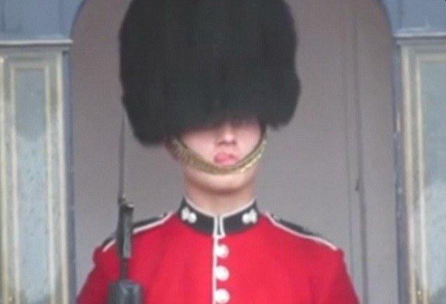 Queen's Guard makes funny faces