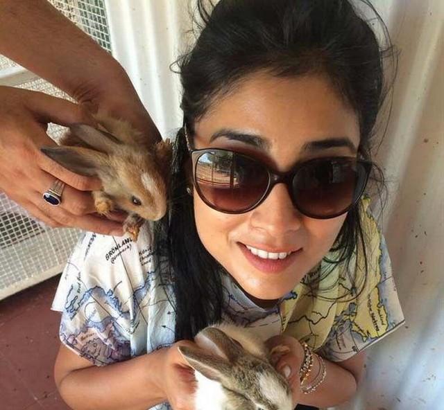 Shriya Saran Latest Pics,Shriya Saran,actress Shriya Saran,south indian actress Shriya Saran,Shriya Saran Latest images,Shriya Saran Latest photos,Shriya Saran Latest stills,Shriya Saran pics,Shriya Saran images,Shriya Saran stills,Shriya Saran hot pics