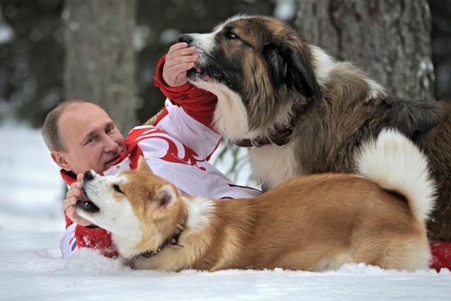 Politicians pets,politicians and animal lovers,animal lovers,barack obama,vladimur putin,Angela Merkel,Julia Gillard,Francois Hollande