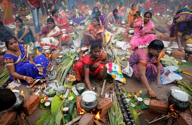 Devotees prepare ritual rice dishes to offer to hindu sun god as they