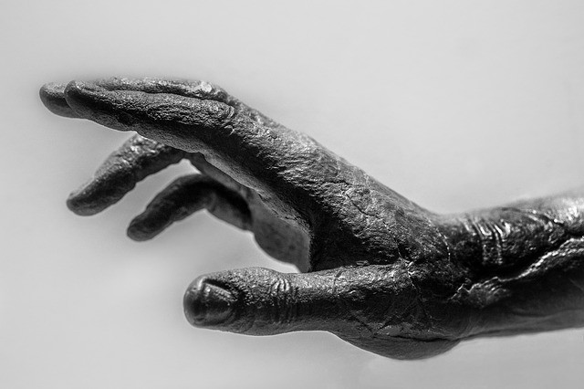 Severed human hands are found dumped in Russian Federation