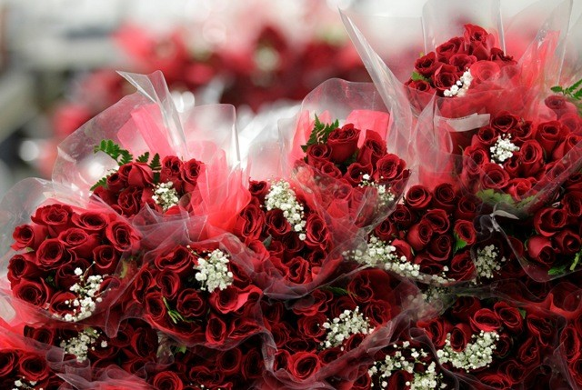 Valentine's Day 2017, Happy Valentine's Day, Happy V-day
