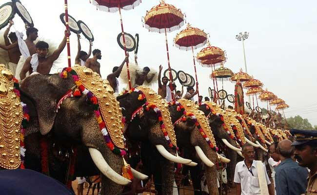 Elephants at the Thrissur Pooram festival