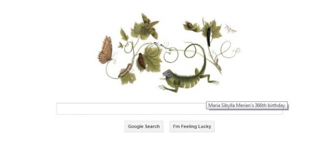 Google doodles 366th birthday of Maria Sibylla Merian