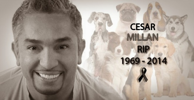 A hoax report claimed that 'dog whisperer' Cesar Millan had died of heart attack.