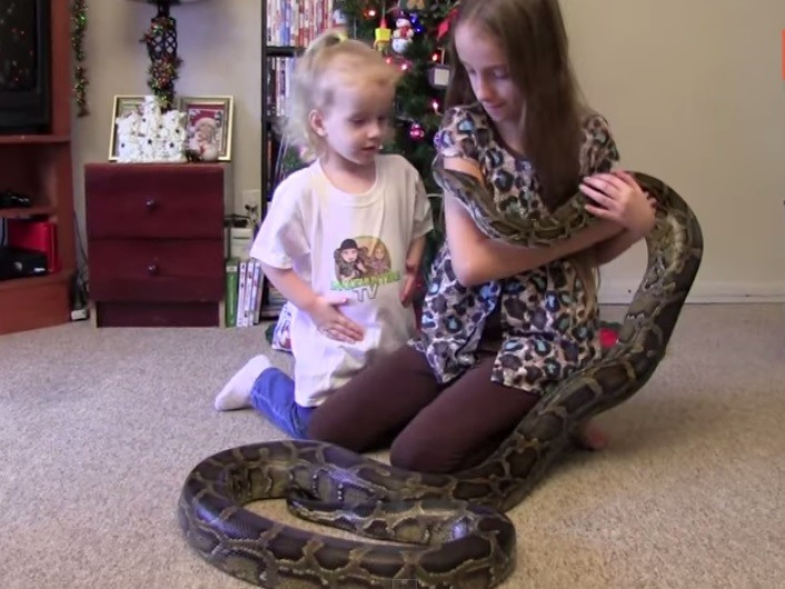 13-Foot-Long Python Scary Video Goes Viral