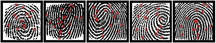 5 partial fingerprints that were selected as MasterPrints from a fingerprint data se