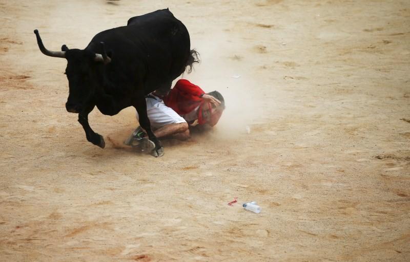 Bull run of Pamplona's San Fermin Festival,bull run,Pamplona's San Fermin Festival,San Fermin Festival,San Fermin Festival 2015,Running of the Bulls,wild cow