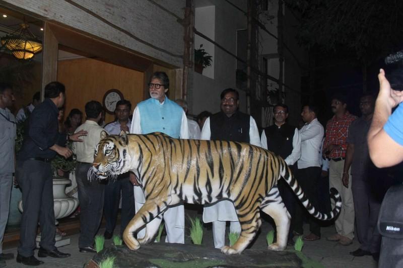 Amitabh Bachchan,Amitabh Bachchan as Tiger ambassador of Maharashtra,Amitabh Bachchan as Tiger ambassador,actor Amitabh Bachchan,Amitabh Bachchan latest pics,Amitabh Bachchan latest images,Amitabh Bachchan latest photos,Amitabh Bachchan latest stills,Amit
